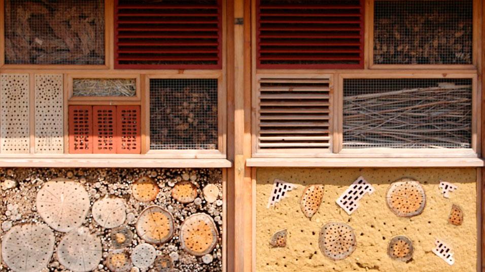 Hôtel à insectes en gros plan